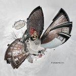 fairey-arnold-lilplanet